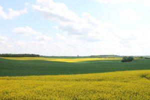 Warnitzer Lesungen Landschaft bei Melzow